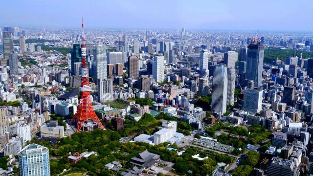 """「東京タワーのある街の「児童養護」政策―ネットでわかる""""誠実な政治家""""の共通点」"""